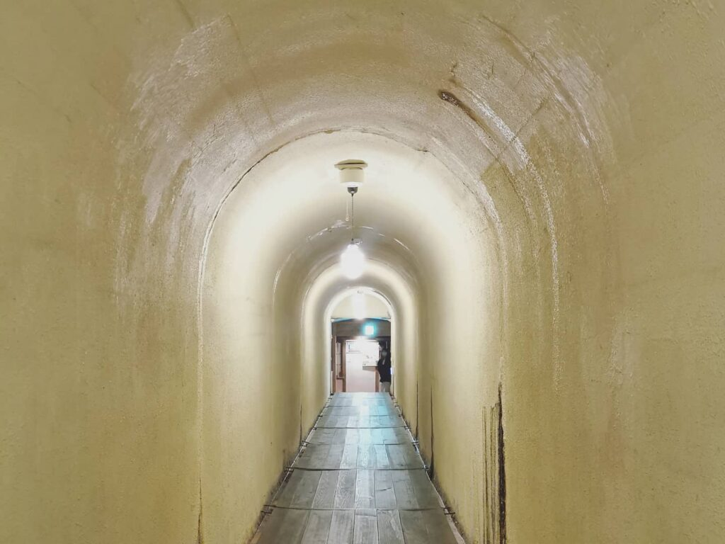 積善館 トンネル