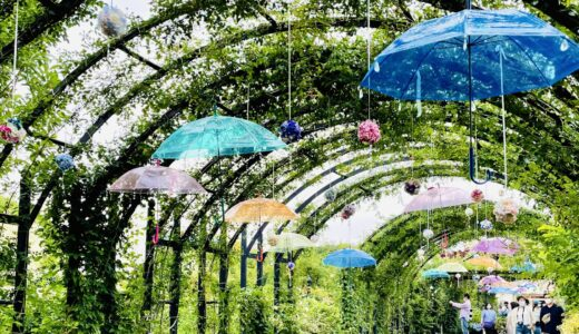 【横浜】バラだけじゃない♡「イングリッシュガーデン」のアジサイフェスティバル♪