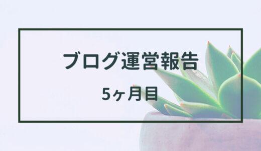 ブログ5ヶ月目の運営報告【右肩上がりはいつまで続く!?】